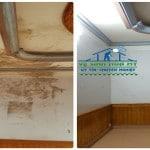 Dịch vụ vệ sinh Nấm Mốc trần tường Diệt Khuẩn-LH:090.221.9778