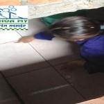Dịch vụ Thau rửa Bể nước Ngầm tại Hà Đông giá rẻ.LH:0988.844.650